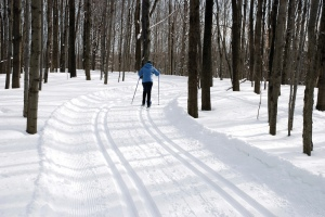 Cross-country skiing along trails maintained by the Black River Environmental Improvement Association has become a winter favorite in Oneida County.
