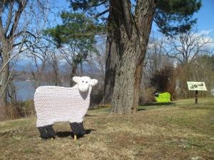 Yarnburst_sheep